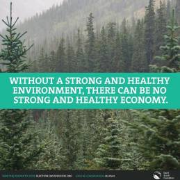 without strong environment no strong economy
